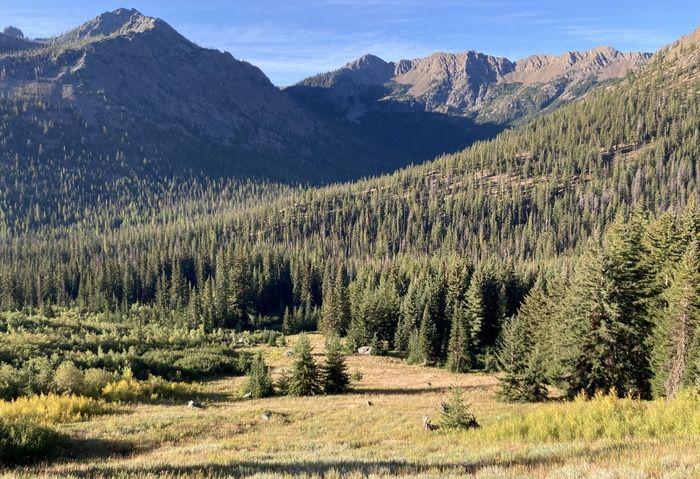 Sherpa Peak meadow
