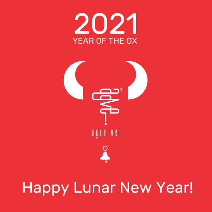 Agne Vei - HAPPY CNY - 2021-2 red.jpg