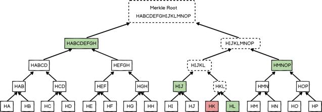 Merkle Tree的验证路径
