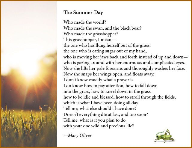 maryoliver-summerday.jpg