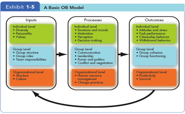 management process and organizational behaviour Organizational processes enhances students' ability to take effective action in complex organizational settings by providing the analytic tools needed to analyze, manage, and lead the organizations of the future.