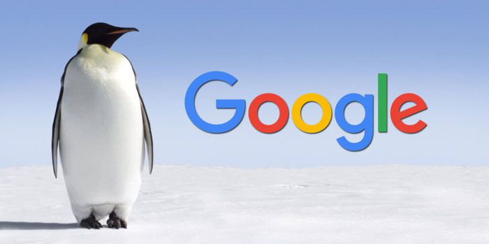 here how to strike the Google penguin changes with web design