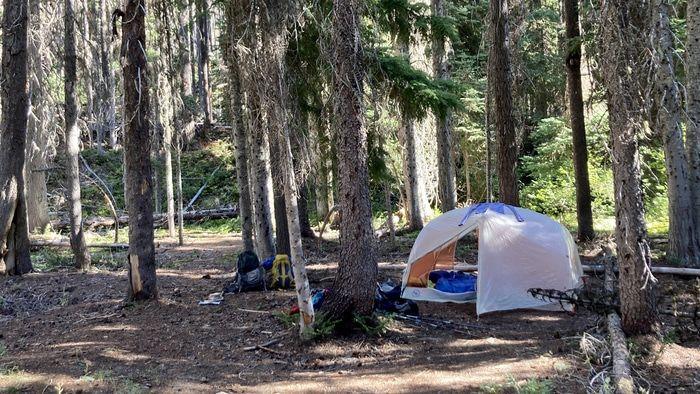 Ingalls Creek Forth Creek campsite