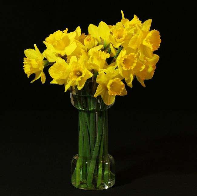 flower-vase-94362_1920.jpg