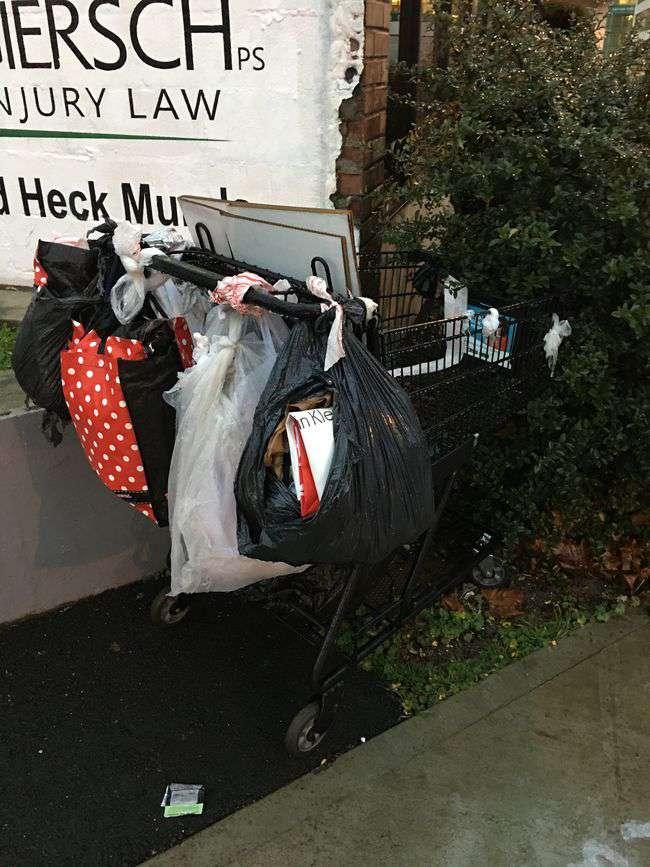 Abandoned_Shopping_Cart.JPG