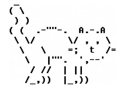 The ASCII table