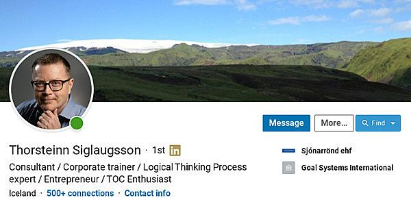 thorsteinnLI600x295.jpg