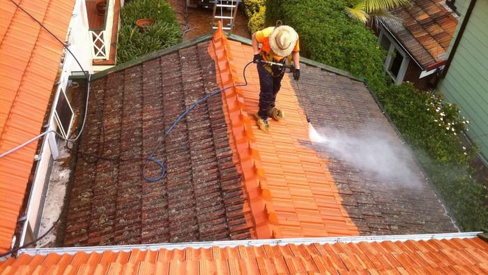 Why roof cleaning important.jpg