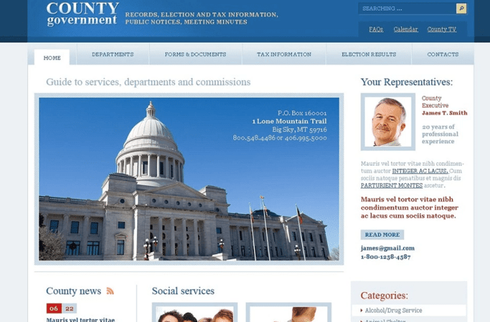 Considerations To Develop A  Government Website