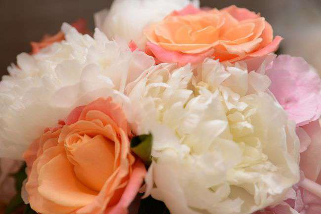flowers-2412836_1920.jpg