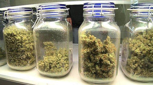san diego medical marijuana.jpg