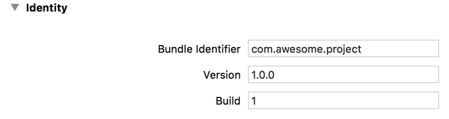 bundle identifier and version