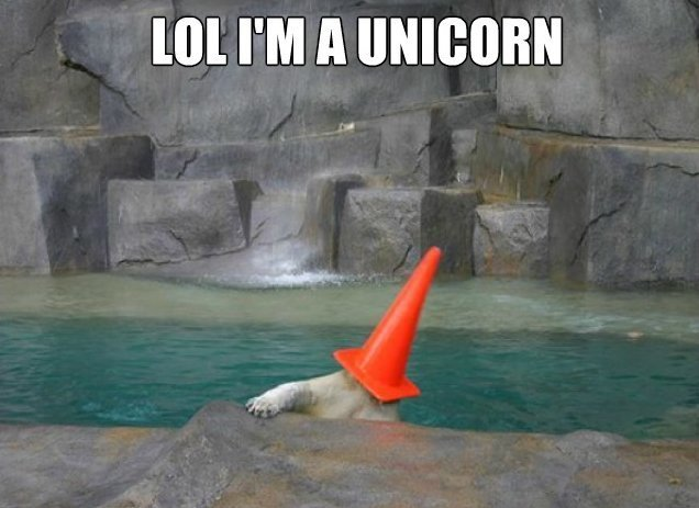 MEME-Unicorn-Polar-Bear.jpg