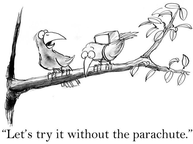 Risk-Taking-Cartoon.jpg