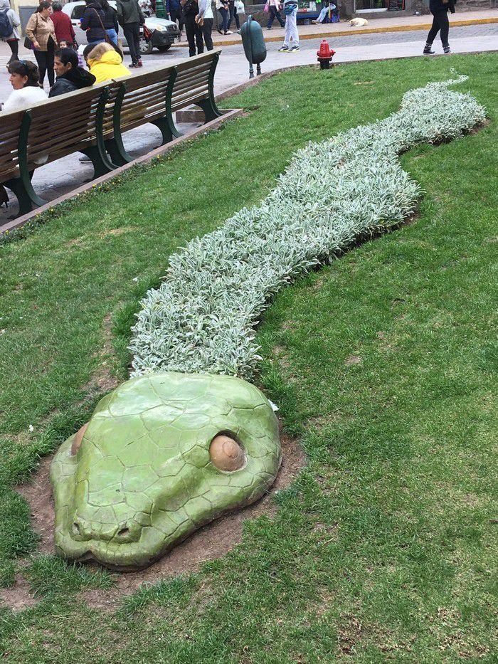 Snake in Peru.jpg