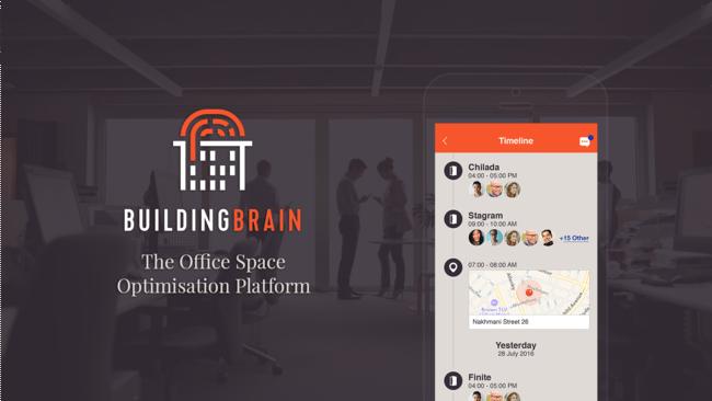 building brain timeline.png